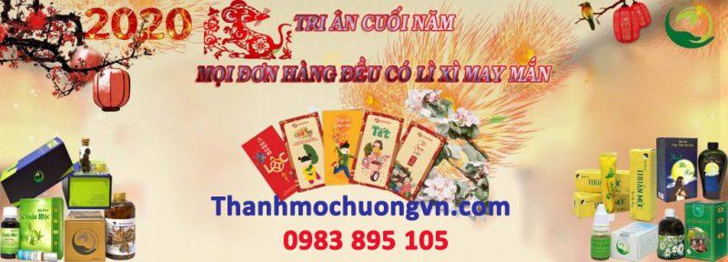 banner-tet-thanh-moc-huong